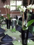 Using orchid plants on head table.